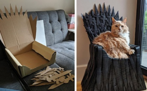 Notable: Fan de 'Game of Thrones' creó un Trono de Hierro de cartón para su gato
